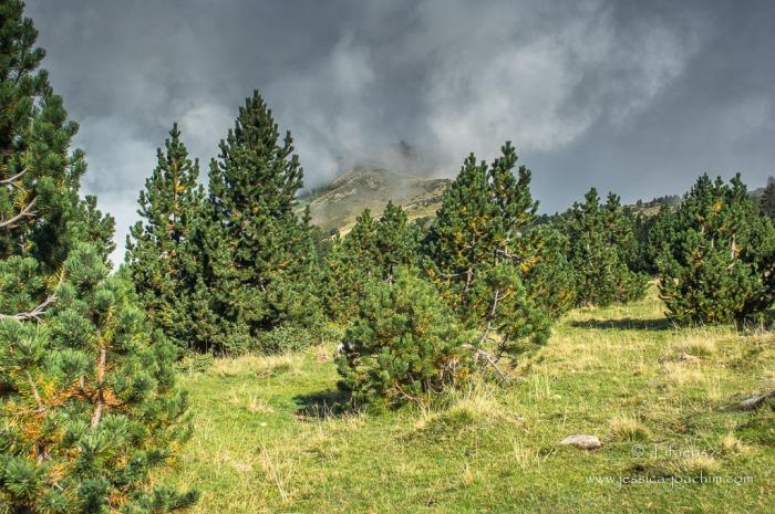Paysage-Plateau de Beille 19.09.2015