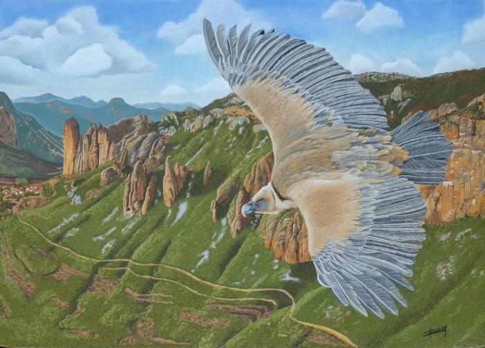 vautour-fauve
